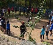 Camp Activity
