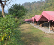 Majestic Luxury Camp Rishikesh