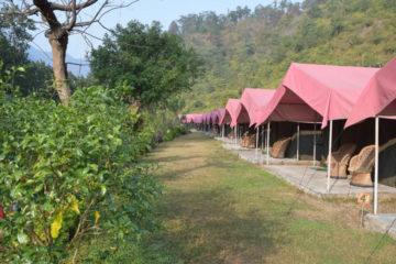 Majestic Luxury Camp Rishikesh