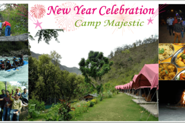 Camp Majestic New Year