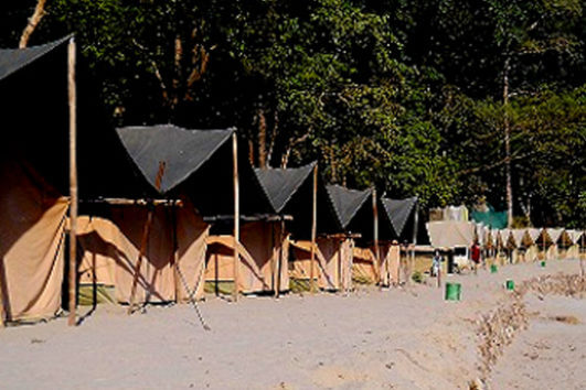 Jungle Adventure Camp Rishikesh