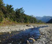 Rajaji National Park River