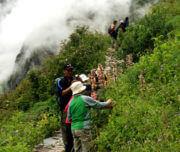 Valley of Flowers Trekking Tour